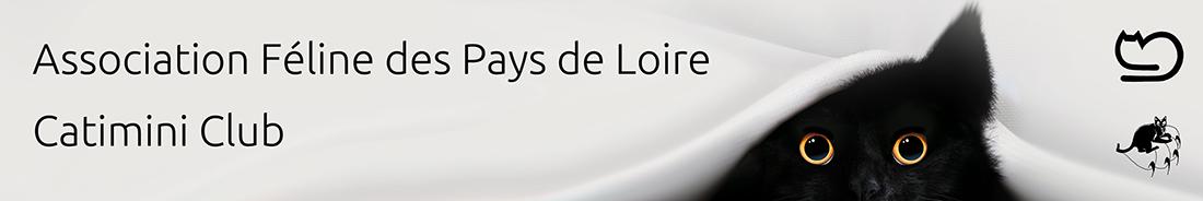 Association féline des Pays de Loire